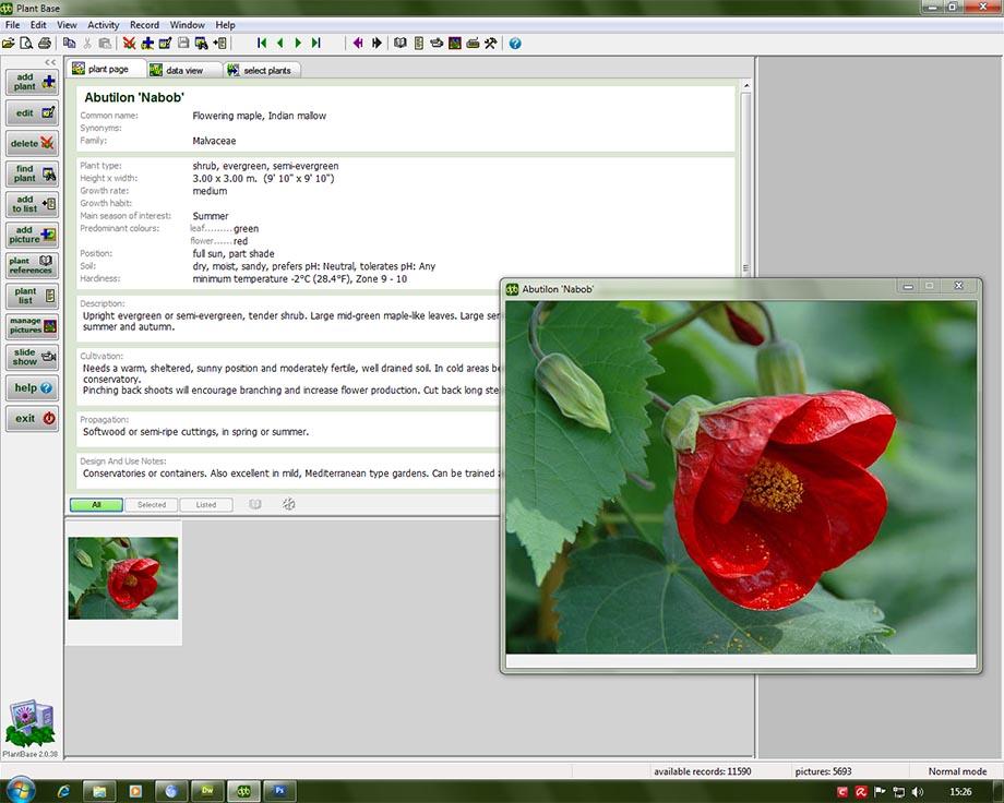 Deeproot Plant Base 2.1.10