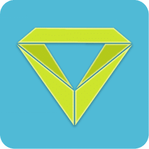 VRidge ikon