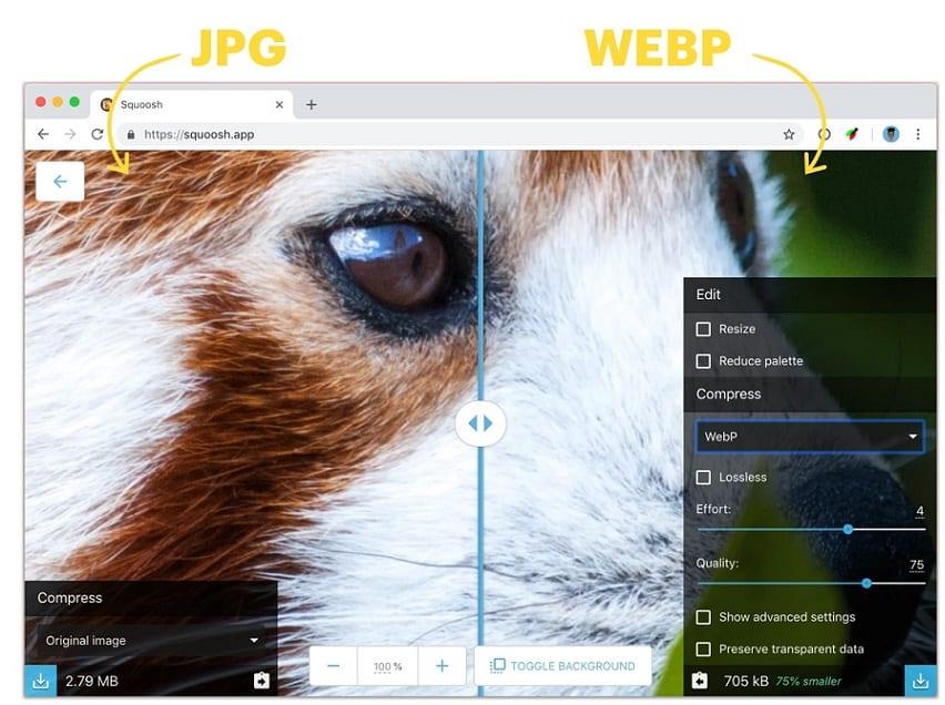 WebP Nedir