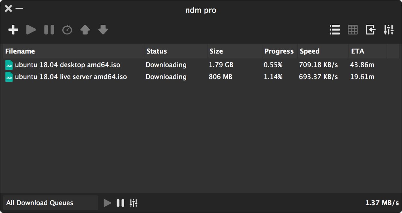 Ninja Download Manager build 46