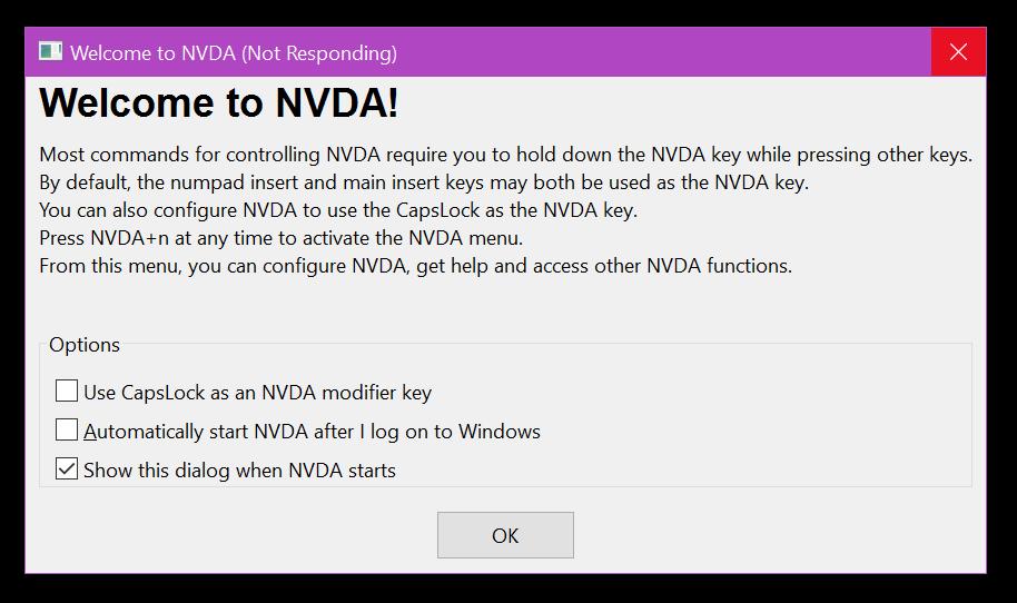 NVDA – Ekran Okuyucu 2021.2